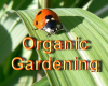 Advanced Organic Gardening with Mary Jac Brennan