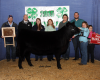 2015 Clover Classic 4-H Beef Cattle Results