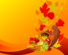 Thanksgiving Library closings