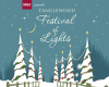 Tanglewood Festival of Lights Presented by BB&T