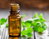 Essential Oils for Beginners on July 15th