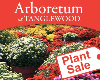 Spring Plant Sale at the Arboretum at Tanglewood Park