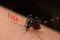 Do You Have Zika Concerns?