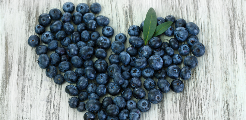 Blueberry Season is Here!
