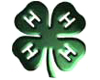4-H Members Win Honors