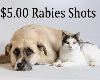 Low Cost Rabies Vaccination Clinic