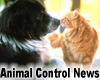 Forsyth County Animal Control Advisory Board Invites Public Comment